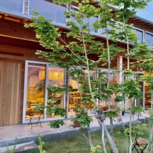 6/6-7 小さな自然とつながる土間のある家 OPEN HOUSE